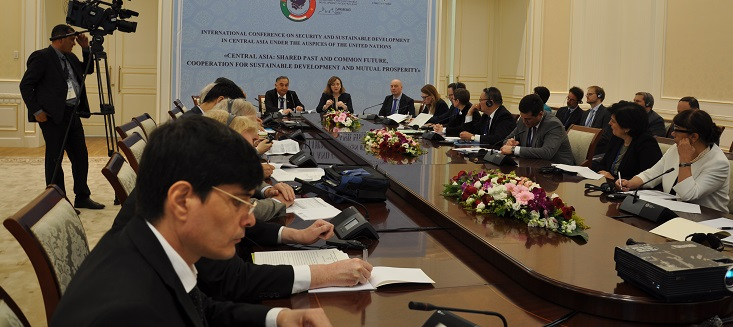 Special Representative Gherman is seen chairing a meeting on water issues in Central Asia.